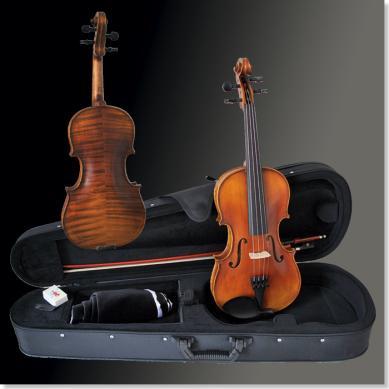 Franz Sandner Violine Garnitur 306